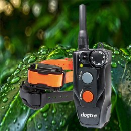 Dogtra 612C For 2 Dogs