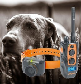Dogtra 2500 T&B Training and Beeper