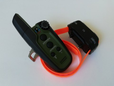 dog collar Garmin Sport PRO